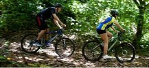 Jungle Biking Trails Suited to Various Skill Levels